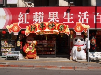 Taiwanese New Year.JPG